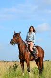 A mulher em um cavalo no campo Fotografia de Stock Royalty Free