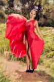 Mulher em um vestido vermelho lindo Imagens de Stock Royalty Free