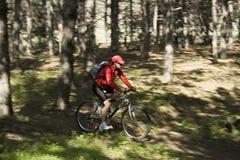 A mulher em uma bicicleta da montanha Imagens de Stock