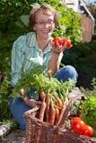Mulher em vegetais de Picknig do jardim Fotos de Stock Royalty Free