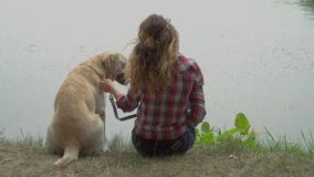 A mulher encaracolado e Labrador estão sentando-se perto do rio vídeos de arquivo