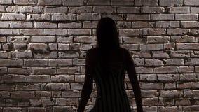 A mulher energética nos saltos altos dança o twerk contra uma parede de tijolo Silhueta Fim acima vídeos de arquivo