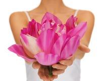 A mulher entrega a flor de lótus da terra arrendada Imagem de Stock