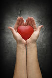 A mulher entrega guardarar o coração sobre um muro de cimento escuro Fotografia de Stock