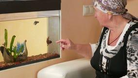 A mulher envelheceu o descanso em casa olhando peixes em um aquário Toca no vidro e na fala com peixes Assento na video estoque