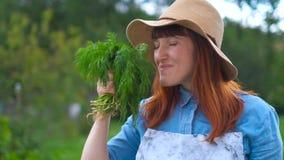 A mulher está feliz com a colheita do jardim e do lote do jardim video estoque
