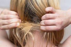 A mulher está tentando desembaraçar um topete do cabelo imagens de stock royalty free