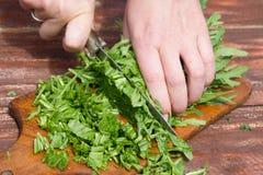 A mulher faz a salada fresca Imagens de Stock