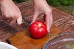 A mulher faz a salada fresca Fotografia de Stock