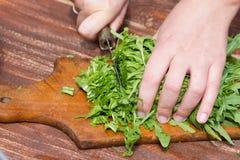 A mulher faz a salada fresca Imagens de Stock Royalty Free