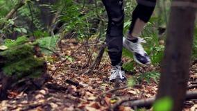 A mulher faz sua maneira na floresta do outono video estoque
