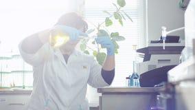 A mulher faz transfusão o óleo contra os raios do sol que quebram através da janela filme