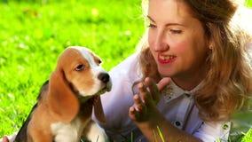 Mulher feliz com um lebreiro do cão que joga na natureza filme