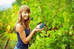 A mulher feliz está guardando um grupo da uva em uma videira com sol brilhante s Fotos de Stock