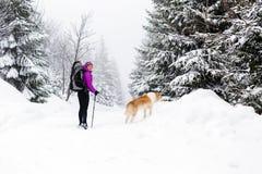 Mulher feliz que anda na floresta do inverno com cão Imagem de Stock Royalty Free