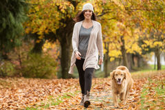 Mulher feliz que anda seu cão do golden retriever em um parque com queda imagem de stock