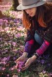 Mulher feliz que aprecia as flores da natureza e do açafrão da mola Fotografia de Stock Royalty Free