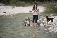 Mulher feliz que joga com seus cães na água Imagem de Stock
