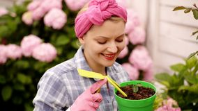 Mulher feliz que toma das flores no jardim Plantando potenciômetros Mulher que jardina em uns potenciômetros cuidado da planta Ja video estoque