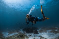 Mulher Freediver foto de stock royalty free