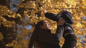 A mulher gerencie seus filho e beijos no nariz filme