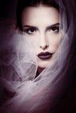 Mulher glamoroso da beleza Imagem de Stock Royalty Free