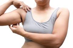 Mulher gorda Fotografia de Stock