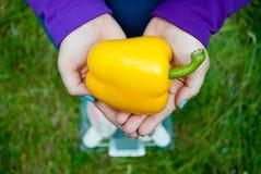 A mulher gorda guarda uma grande pimenta búlgara doce amarela imagem de stock royalty free