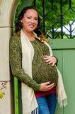 Mulher gravida bonita Imagens de Stock