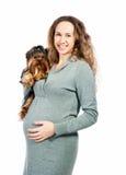 Mulher gravida com o cão imagem de stock royalty free