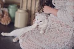 Mulher gravida e um gato Imagens de Stock