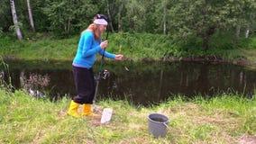 Mulher gravida em peixes amarelos da captura das botas o gato senta-se perto da cubeta video estoque