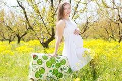 Mulher gravida feliz na natureza Fotografia de Stock Royalty Free