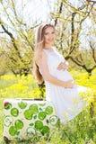 Mulher gravida feliz na natureza Imagens de Stock