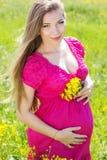 Mulher gravida feliz que senta-se no campo verde Imagem de Stock