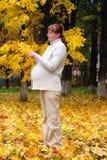 Mulher gravida na folha de plátano #1 da preensão do parque do outono imagens de stock royalty free