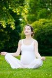 Mulher gravida no parque Foto de Stock Royalty Free