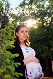 Mulher gravida no parque Imagem de Stock