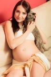Mulher gravida no sofá que joga com gato Fotos de Stock Royalty Free