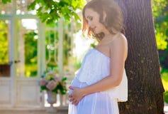 Mulher gravida, no vestido branco na natureza imagens de stock royalty free