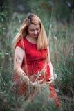 Mulher gravida no vestido vermelho Imagens de Stock Royalty Free