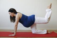 Mulher gravida nova que faz o exercício do músculo do pé. Imagens de Stock