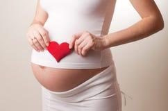 A mulher gravida põr um brinquedo ouve-se no branco Foto de Stock Royalty Free