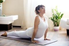 A mulher gravida que faz a ioga ascendente do cão do revestimento levanta em casa Fotografia de Stock