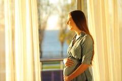 Mulher gravida que olha através de uma janela fotografia de stock royalty free