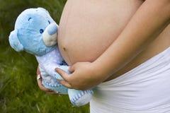 Mulher gravida que prende um urso azul Imagem de Stock Royalty Free