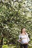 Mulher gravida que relaxa no parque Imagens de Stock Royalty Free