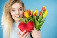 A mulher guarda tulipas e o coração vermelho Fotos de Stock