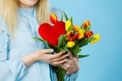 A mulher guarda tulipas e o coração vermelho Imagens de Stock