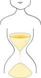 Mulher - hourglass ilustração do vetor